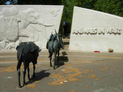 arguments pour la corrida