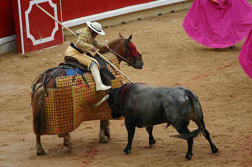 bullfighting argumentative essay